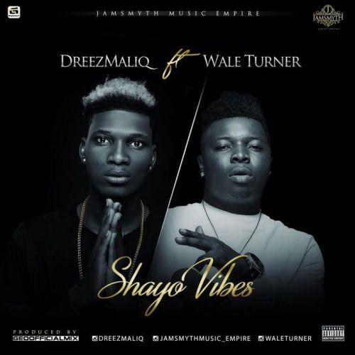 Dreezmaliq ft. Wale Turner - Shayo Vibes Mp3 Audio