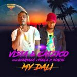 Vista & DJ Catzico ft. Iziqhaza, Toolz & Static – My Dali