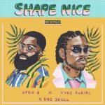 Afro B ft. Vybz Kartel x Dre Skull – Shape Nice