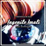 Cheesenator BTM ft. DJ Nyceone – Ingenile Imali