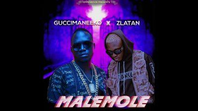 Guccimaneeko Ft. Zlatan - Malemole (Prod. Sarz) Mp3 Audio Download