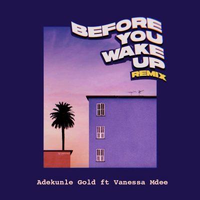 Adekunle Gold ft. Vanessa Mdee - Before You Wake Up (Remix) Mp3 Audio Download