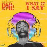 Fireboy DML – What If I Say (Prod. Pheelz)