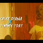 Timmy TDat Ft. Spice Diana – Obisaana (Audio + Video)