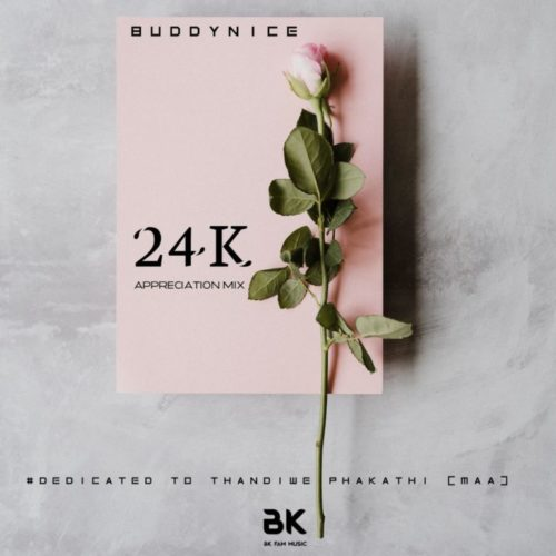 Buddynice - 24K Appreciation Mix (Dedicated To Thandiwe) Mp3 Audio Download