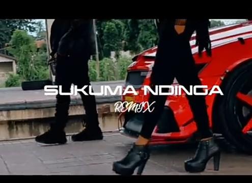 Rosa Ree - Sukuma Ndinga (Remix) Ft. Rayvanny Mp3 Audio Download