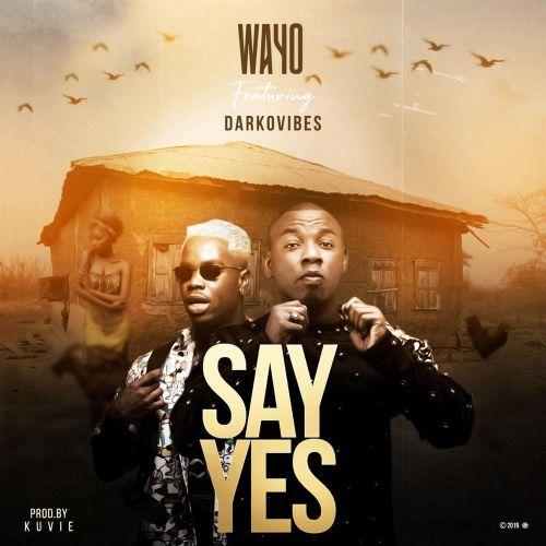 Wayo Say Yes Ft Darkovibes Mp3 Audio Download
