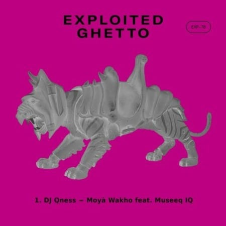 DJ Qness - Moyà Wakho Ft. Museeq IQ Mp3