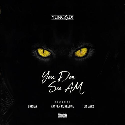 Yung6ix - You Don See Am Ft. Erigga, Payper Corleone, Dr Barz Mp3 Audio Download