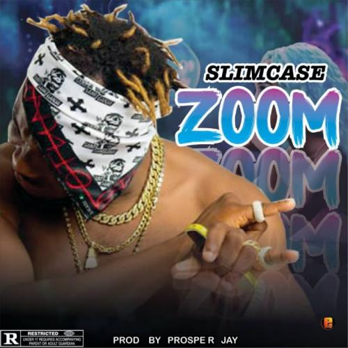 Slimcase - Zoom Mp3 Audio Download