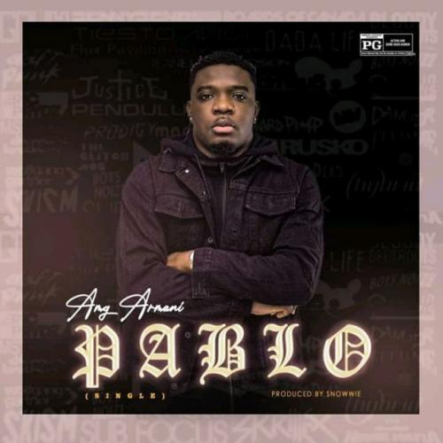AMG Armani - Pablo Mp3 Audio Download