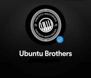 Ubuntu Brothers - Party Invader Mp3 Audio Download