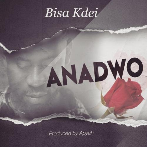 Bisa Kdei - Anadwo (Prod. by Apya) Mp3 Audio Download