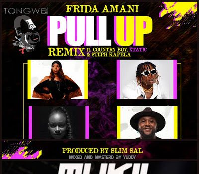 Frida Amani Ft. Country Boy, XTatic, Steph Kapela - Pull Up Mp3 Audio Download