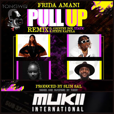 Frida Amani Ft. Country Boy, XTatic, Steph Kapela - Pull Up Mp3 Audio Download
