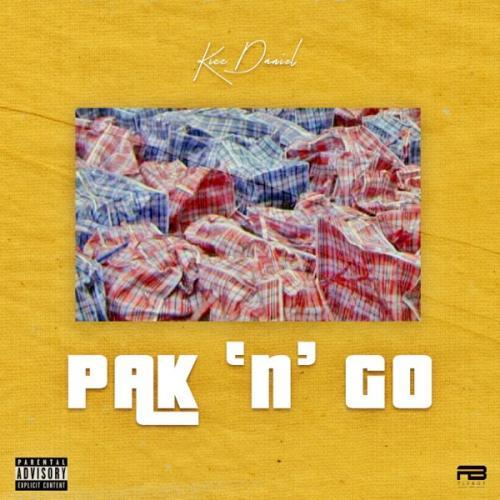 Pack and Go Kizz Daniel - Pak n Go Mp3 Audio Download