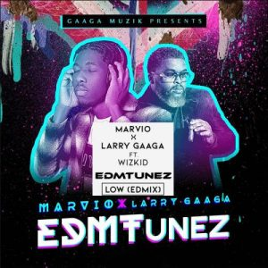 Larry Gaaga - EDMTunez Ft. Marvio (FULL ALBUM) Mp3 Zip Fast Download Free Audio complete