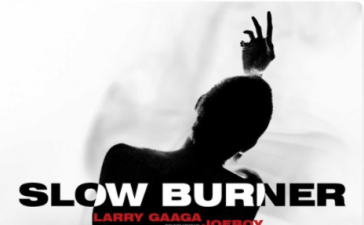 Larry Gaaga Ft. Joeboy - Slow Burner (Audio + Video) Mp3 Mp4 Download