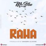Mr Blue – Raha