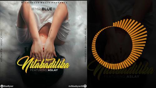 Mr Blue Ft. Aslay - NIMEBADILIKA Mp3 Audio Download