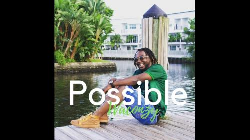 Waconzy - Possible Mp3 Audio Download