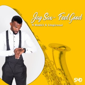 Jay Sax - Feel Good Ft. Bakk3, Llogicsoul Mp3 Audio Download