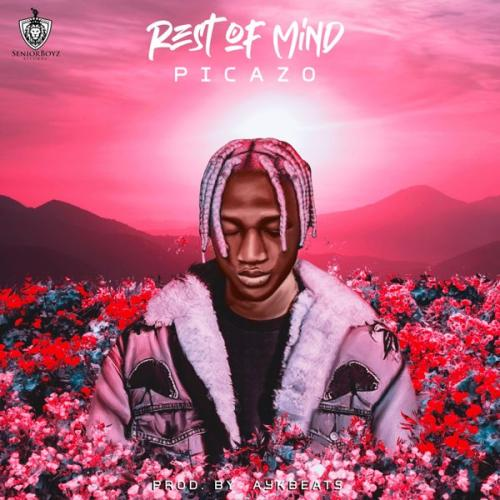Picazo - Rest Of Mind Mp3 Audio Download