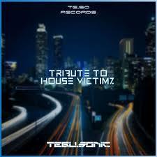 Tebu Sonic - Tribute to House Victimz Mp3 Audio Download