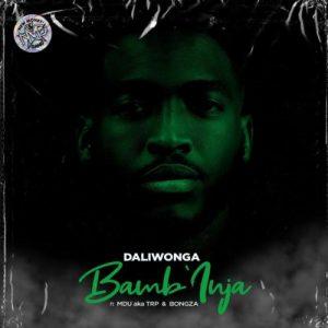 Daliwonga - BambInja Ft. MDU aka TRP, Bongza