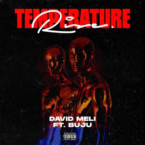 David Meli - Temperature Rise Ft. Buju