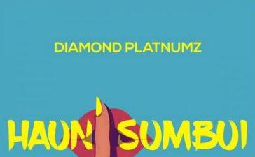 Diamond Platnumz - Haunisumbui Mp3