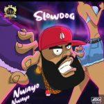 Slowdog – Nwayo Nwayo