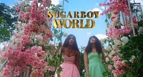 VIDEO: Minjin - Sugarboy (Remix) Ft. Korede Bello Ft. DJ Big N
