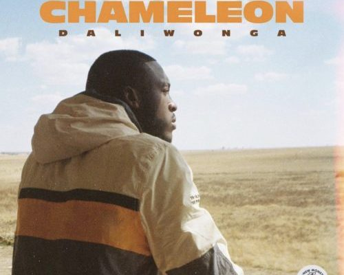 ALBUM: Daliwonga - Chameleon Zip Mp3 Download