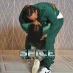 Spice – Rasta Man