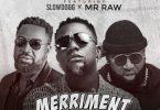 [Audio/Video] TJ Eleweukwu - Merriment Ft. Slowdog & Mr Raw