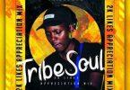 TribeSoul – 2K Appreciation Mix