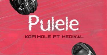 Kofi Mole - Pulele Ft. Medikal