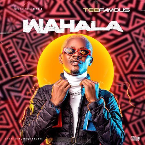 Teefamous - Wahala