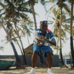VIDEO: DJ Spinall Ft. Fireboy DML – Sere