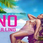 Fantana – No Dulling