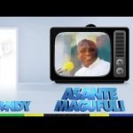 Nandy – Ahsante Magufuli