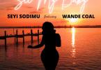 Seyi Sodimu - See My Baby Ft. Wande Coal
