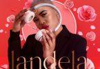Slenda Da Dancing DJ - Landela Ft. Q Twins, Andiswa Live