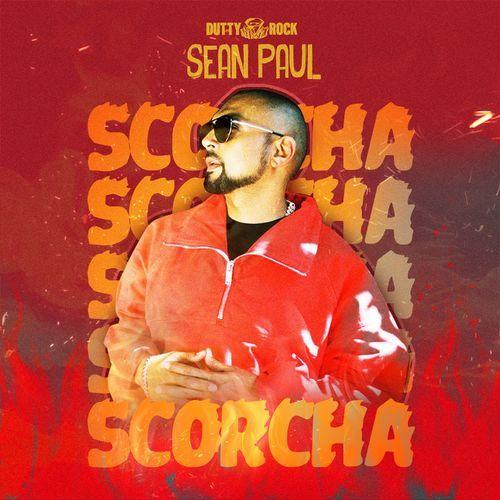 Sean Paul - Scorcha (Prod. by Carleene Samuels)
