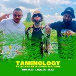 Taminology – Nkao Jola 2.0 Ft. Blaklez, Chad Da Don