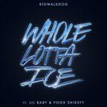 BigWalkDog Ft. Lil Baby & Pooh Shiesty – Whole Lotta Ice