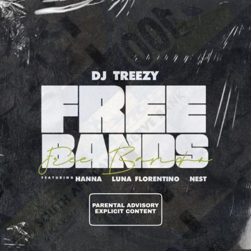 DJ Treezy Free Bands Ft Luna Florentino Hanna Nest