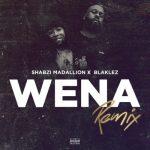 Shabzi Madallion Ft. Blaklez – Wena (Remix)