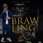 Teejay – Brawling